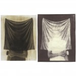 "Black Veil, 2002. Waxed calotype negative with graphite, and salt print. 10"" x 8"" each"