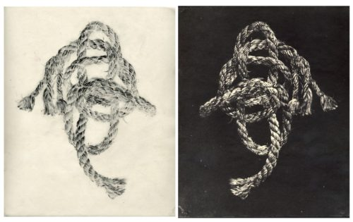 "Knot, 2004. Waxed pencil drawing, and salt print. 10"" x 8"" each"