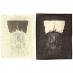 "Sleep (Hair), 2004. Waxed Calotype negative with pencil, and salt print. 10"" x 8"" each"