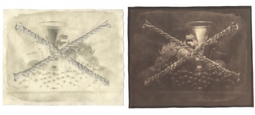 "Still Life, 2005. Waxed Calotype negative with pencil, and salt print. 8"" x 10"" each"