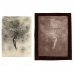 "Little Devils, no. 1, 2001. Waxed calotype negative with pencil, and salt print. 5"" x 4"" each"