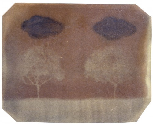 "Two Trees, 1998. Calotype negative with watercolor. 4"" x 5"""
